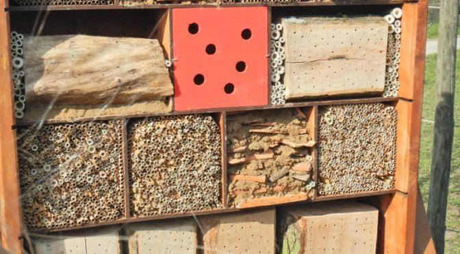 Insektenhotel für die  Erich Kästner Schule